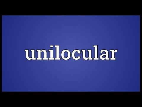 Header of unilocular