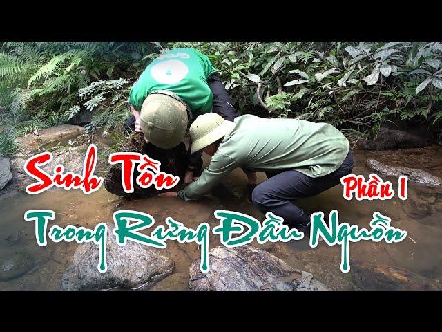 Sinh Tồn Trong Rừng Đầu Nguồn (Survival in watershed forests) I Sắc Màu Vùng Cao - Phần 1
