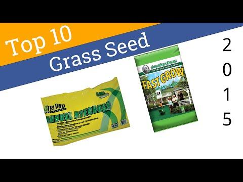 10-best-grass-seed-2015