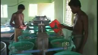 Magur Palan In Hindi