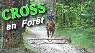 CROSS dans la forêt [Examen G5 & G4]