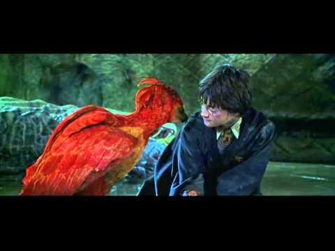 Phoenix tears youtube phoenix tears voltagebd Gallery