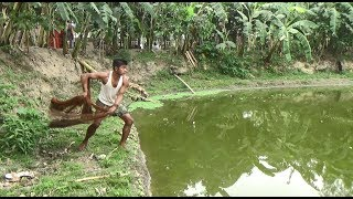 Net Fishing | Catching Lot Of Big Fish With Cast Net | Net Fishing in the village (Part-265)