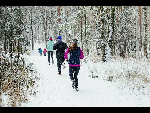Group runners athletes run in snow forest during winter marathon