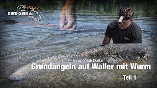 Euro-som - Grundangeln Auf Waller Mit Wurm. Teil 1