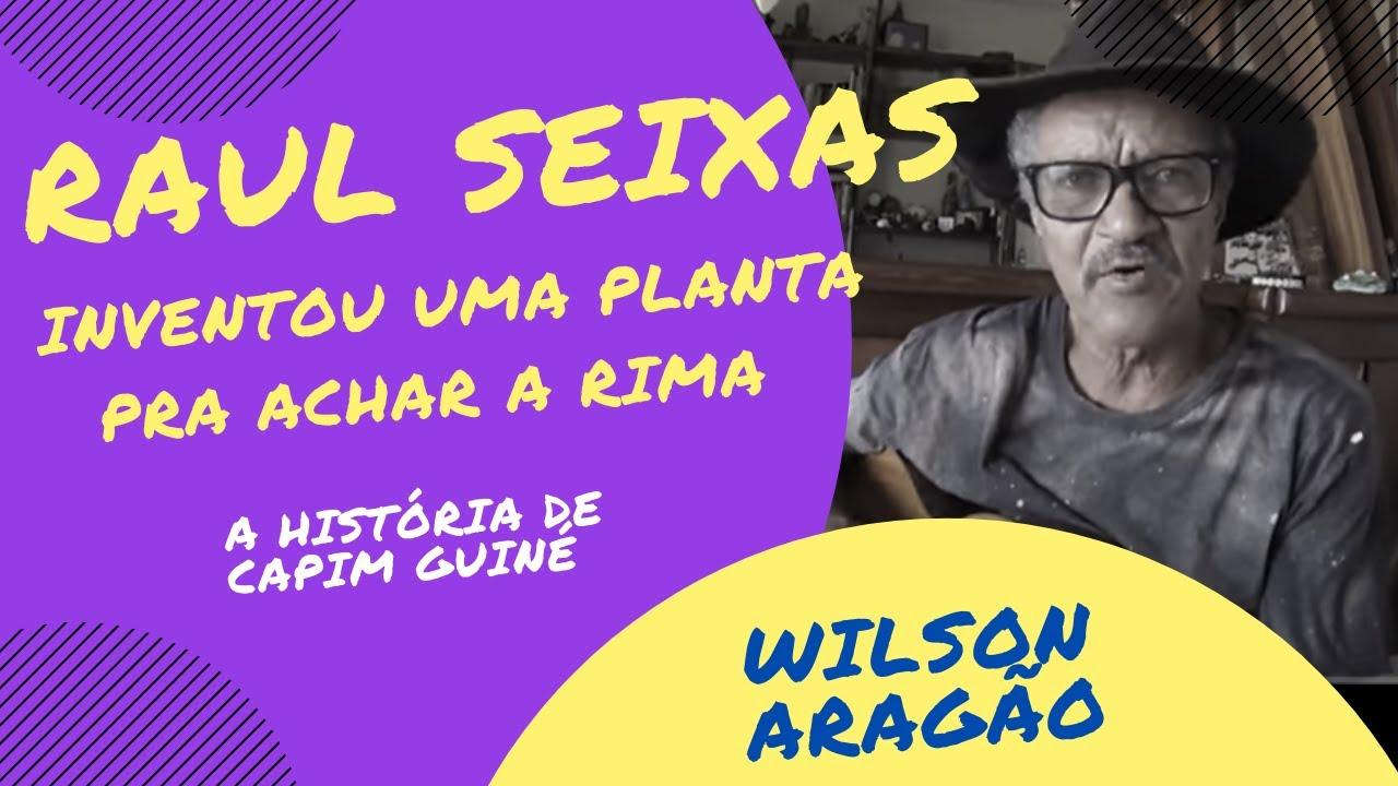 Wilson Aragão, Raul Seixas e a história de CAPIM GUINÉ! - YouTube