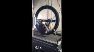 Jumping with a Single Wheel Robot