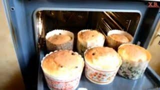 Пасхальный кулич с изюмом и цукатами. Вкусные куличи на Пасху видео.