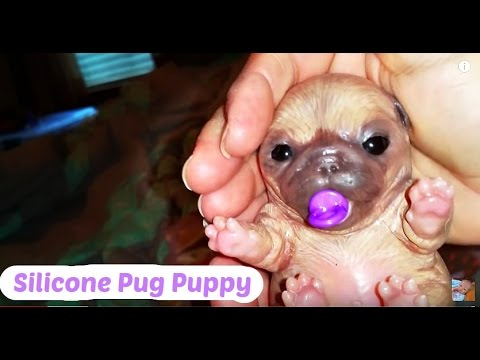 Silicone Pug Puppy And Silicone Mini Baby Collection So
