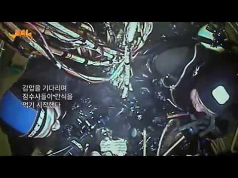 다이빙벨 해외판(감독판) 무료 공개