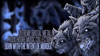 ► Extreme Brutal Metal/Deathcore Music Collection IV [Sorrow.] ☠ 1 Hour ☠