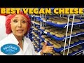 BEST Vegan Cheese & How It's Made - Miyoko's Kitchen Tour VEGANTRAVEL#29