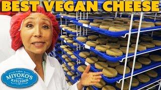 BEST Vegan Cheese & How It's Made - Miyoko's Kitchen Tour VEGANTRAVEL#29