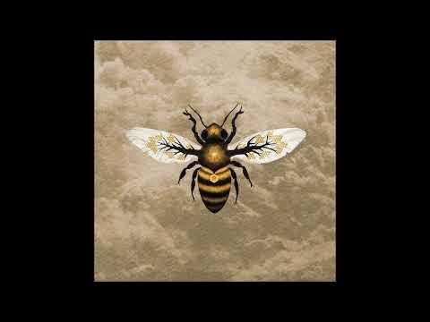 Bees Made Honey In The Vein Tree - Medicine (Full Album 2017)