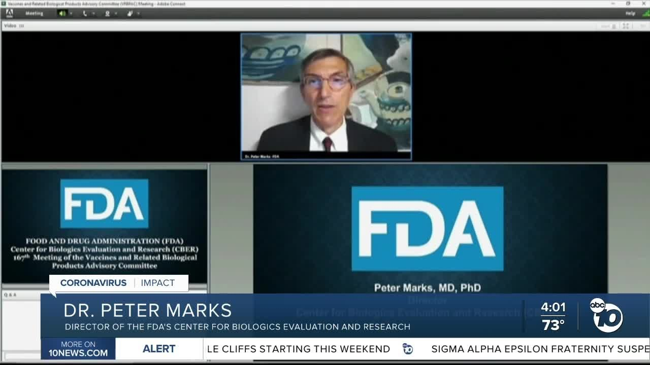 FDA panel endorses COVID-19 booster shots for older Americans ...