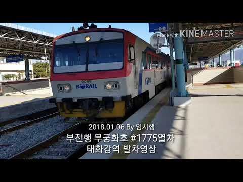 동해선 부전행 무궁화호 #1775열차 태화강역 발차영상(2018.01.06)