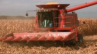 johnson family farm case ih 2366 combine on 10 28 2013