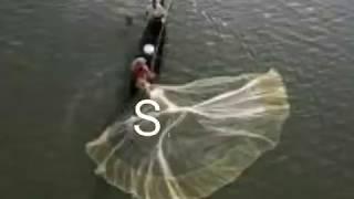Sirai