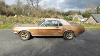 FOR SALE: 1967 Ford Mustang. Cold Start. 289 V8