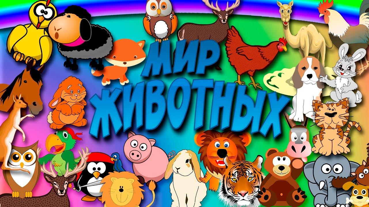 Картинки с надписью в мире животных