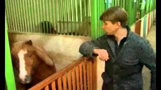 29.05.12  Алексей Ягудин Хочу знать - Как купить пони?