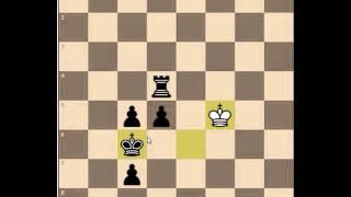 Перекатал Иранского шахматиста