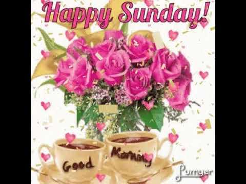 Happy Sunday Flowers Gif Youtube