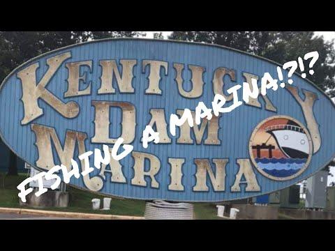Bank Fishing Kentucky Dam Marina!!!/Kentucky Lake Trip