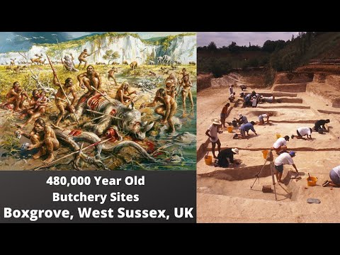 480,000 year old Boxgrove Archaeological Site