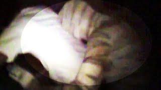 Mumia złapana na Kamerze - co może zrobić?