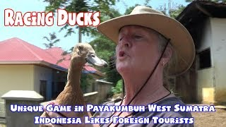Video Racing Ducks, Unique Game in Payakumbuh West Sumatra Indonesia Likes Foreign Tourists download MP3, 3GP, MP4, WEBM, AVI, FLV Agustus 2018