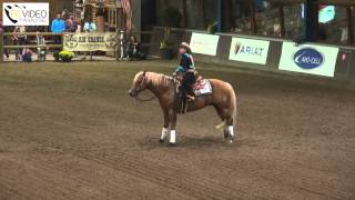 NK Reining 2015: 1. Rieky Young