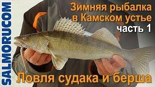 Ловля судака и берша - Зимняя рыбалка в Камском устье часть 1