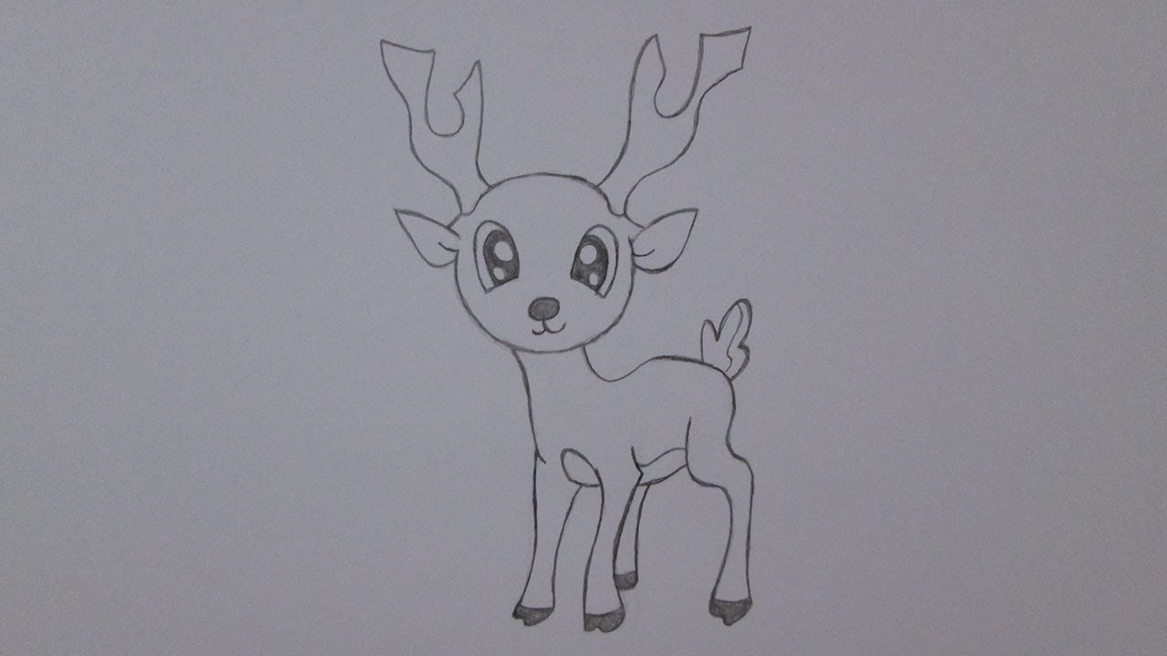 Line Drawings Of Animals Deer : How to draw a deer youtube