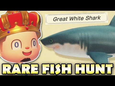 🦈[JUNE] SHARKS & MORE!  Animal Crossing New Horizons RARE FISH HUNT!