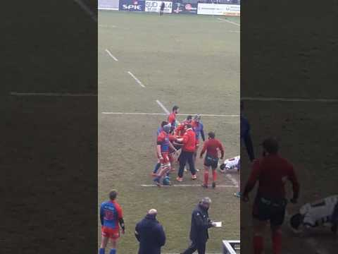 Rugby fight