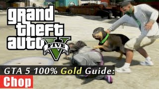GTA 5 Walkthrough: Chop (100% Gold Completion) HD