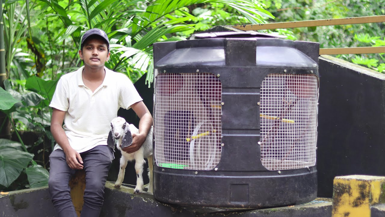 Love Birds Cage From Old Water Tank🐦 | പഴയ വാട്ടർ ടാങ്ക് ഇനി കിളിക്കൂട് | Old Water Tank Reuse Idea