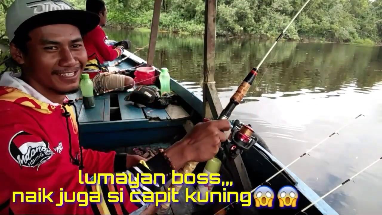 Spot Mancing Udang Di Samarinda