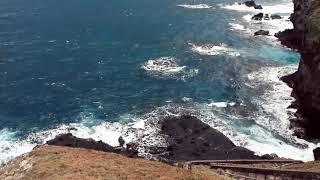 Freya Riding - Lost Without You (Kia Love Remix) Video