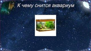 К чему снится Аквариум (Сонник)