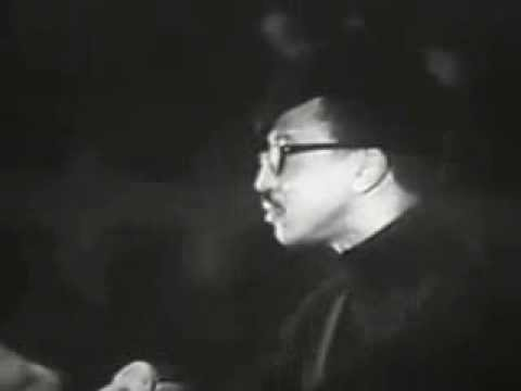 Speech by H  Rap Brown on White Nationalism