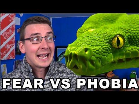 Fear vs Phobia