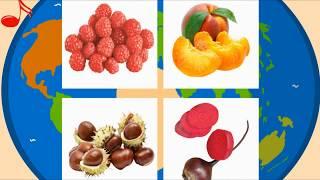 Учим овощи и фрукты. Развивающее видео для детей. Обучение по методу Домана