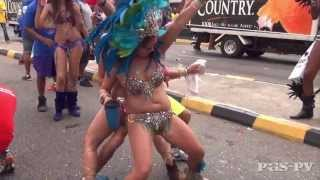 Bacchanal Jamaica 2013 Road March