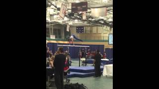 Nathan 2016 IL State Meet - Level 6 - Pbars