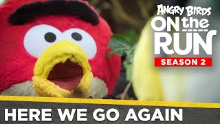 Angry Birds On The Run S2 | Here We Go Again! - Ep1