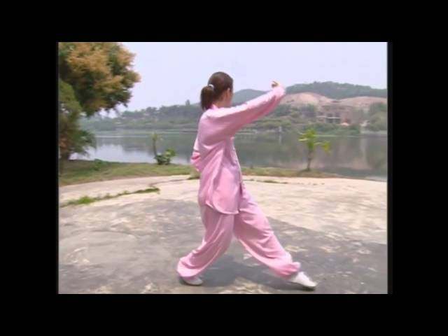 Cheng Style Bagua Zhang - Walking The Circle