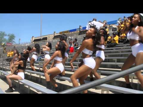 Alabama State Stingettes Area Codes Black & Gold 16