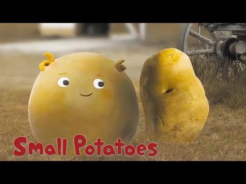 The 5th Small Potato